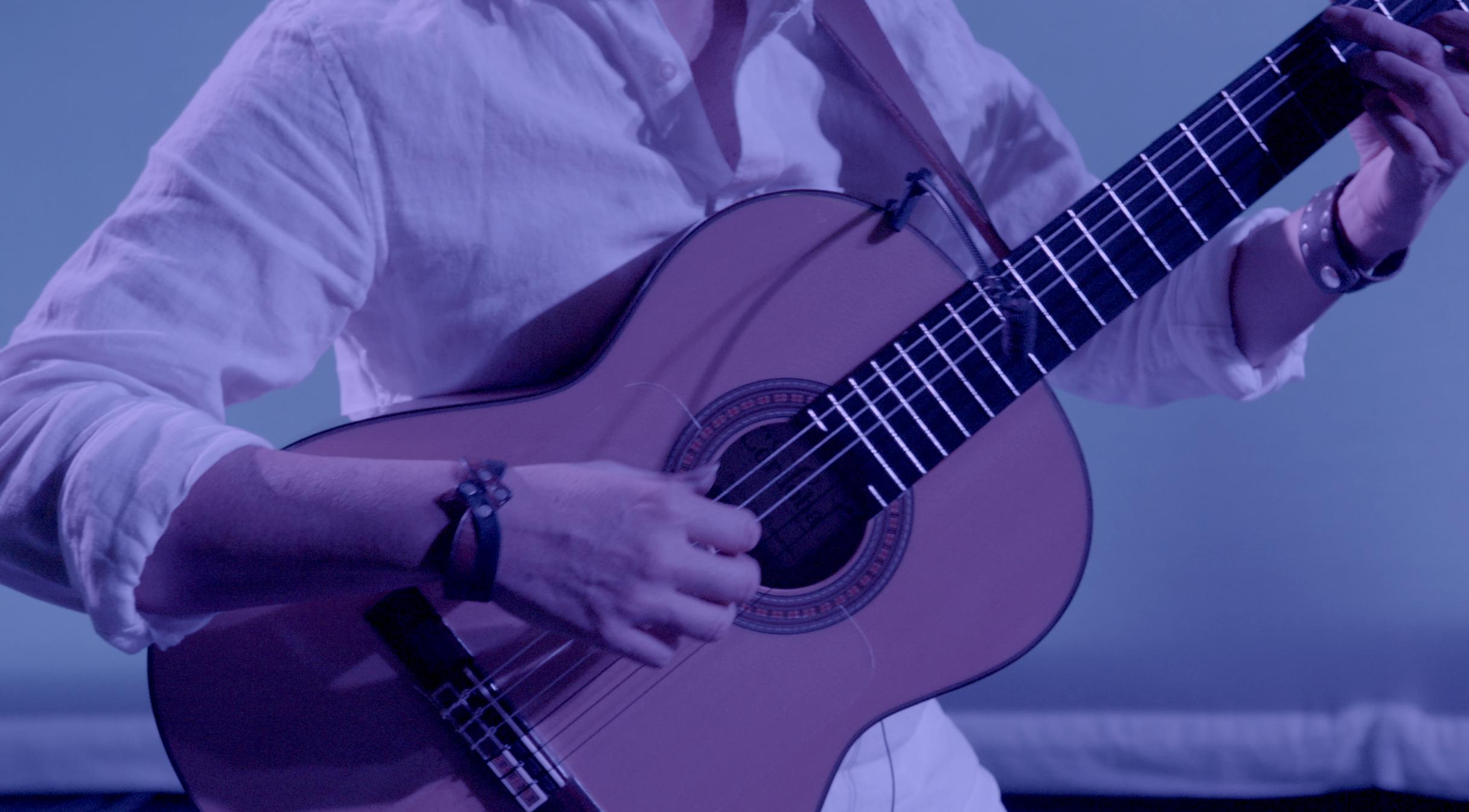 flo-guitar-NVC-cropped